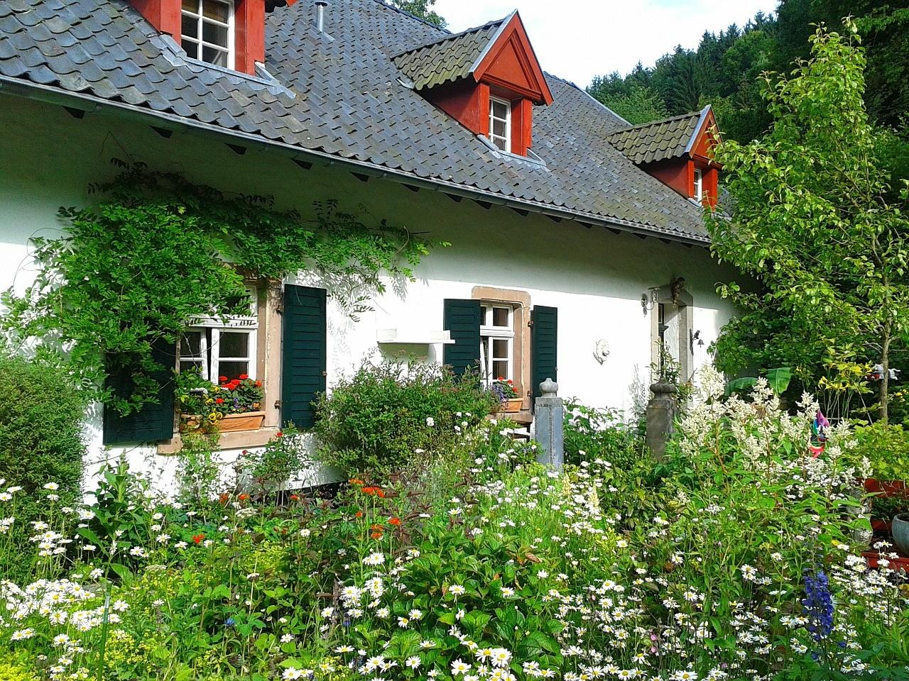 Hilfe bei Gartenpflege und Gartengestaltung in Lüneburg und Hamburg